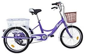 Triciclo para adultos con almacenaje Riscko